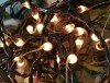 Light Strands & Bulbs