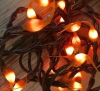 Rustic Pumpkin Spice Autumn / Halloween Hand Dipped Light Strand